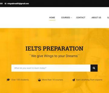 wingsabroadinstitutes.com